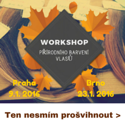 workshop_prodnho_barven